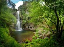 Naturaleza Asturias